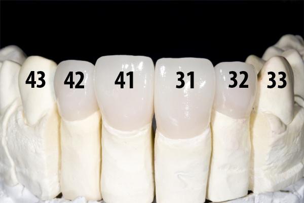 Используемые системы для нумерации зубов