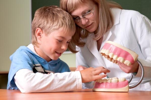 Форма зубных рядов в постоянном прикусе