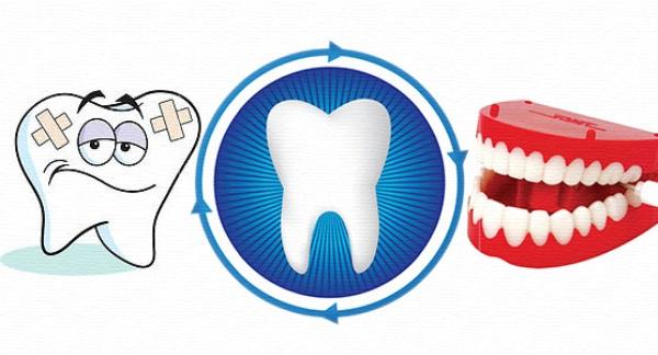 Степени подвижности зубов по Энтину
