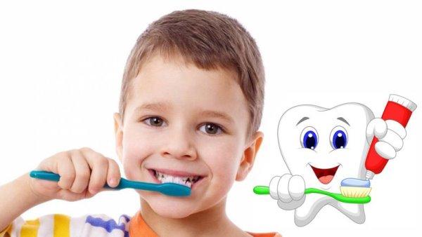 Правила профилактики кариеса у детей дошкольного возраста
