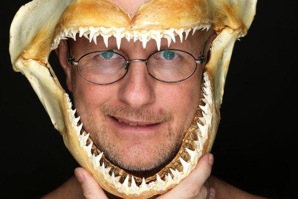 Нужно ли человеку удалять акульи зубы