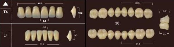 Yamahachi зубы